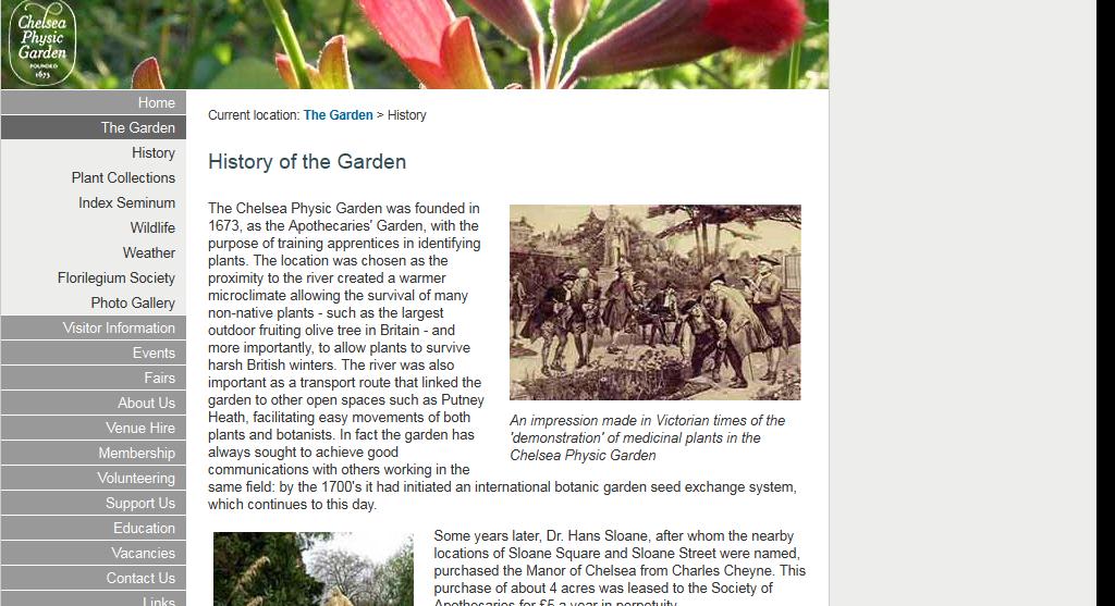 Челсийский сад лекарственных растений